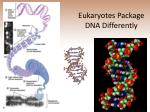eukaryotes package dna differently