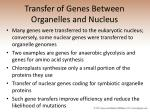 transfer of genes between organelles and nucleus