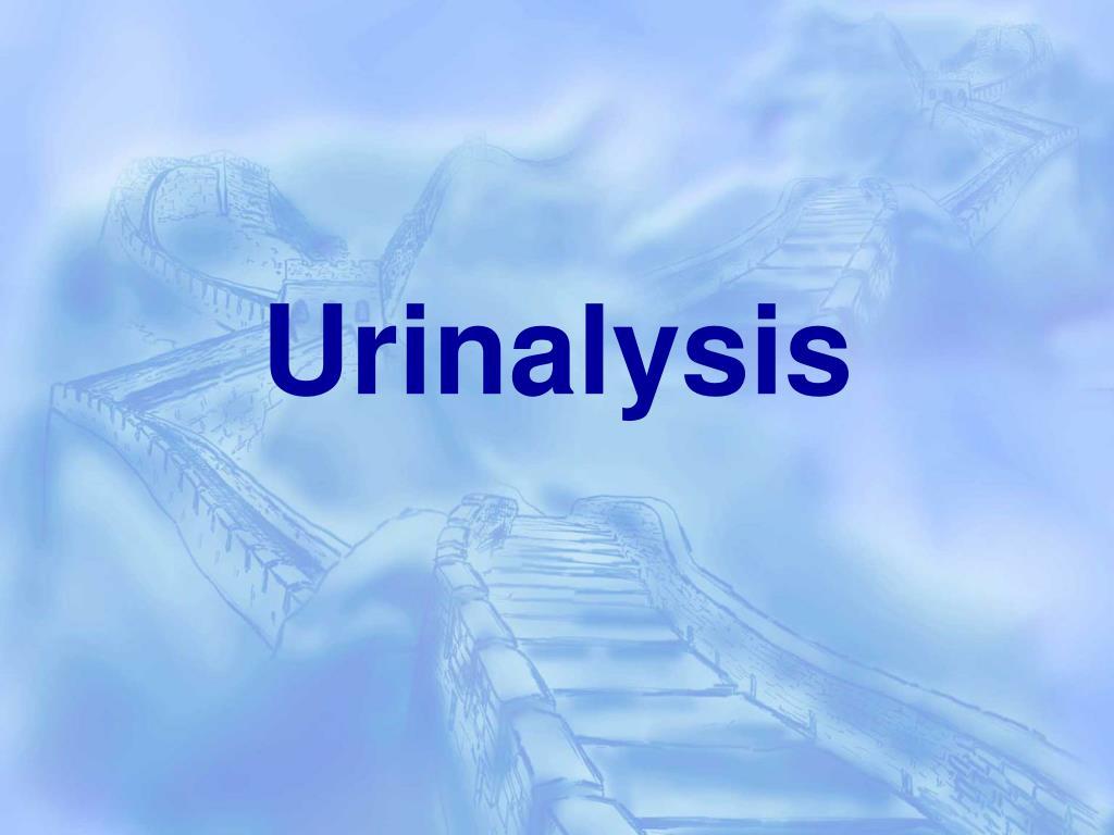 urinalysis l.