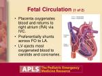 fetal circulation 1 of 2