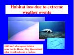 habitat loss due to extreme weather events