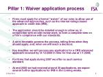 pillar 1 waiver application process