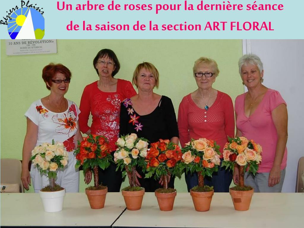 un arbre de roses pour la derni re s ance de la saison de la section art floral l.