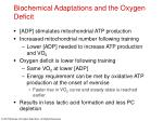 biochemical adaptations and the oxygen deficit