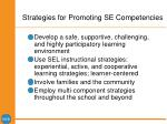 strategies for promoting se competencies27