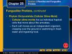 funguslike protists continued35