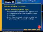 plantlike protists continued