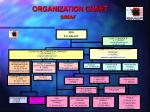organization chart simaf