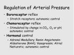 regulation of arterial pressure