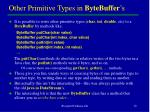other primitive types in bytebuffer s