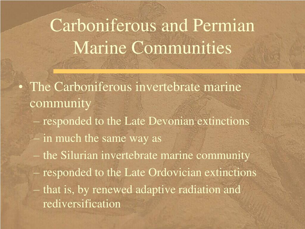 Carboniferous and Permian Marine Communities