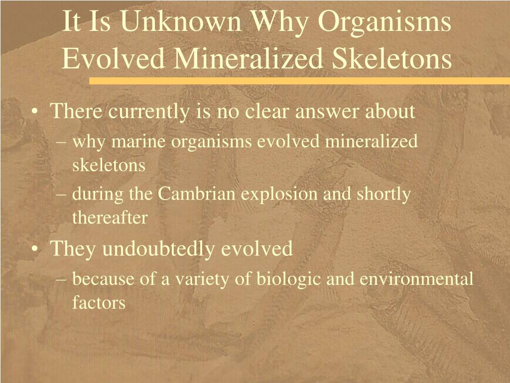 It Is Unknown Why Organisms Evolved Mineralized Skeletons