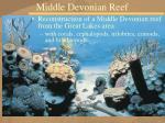 middle devonian reef