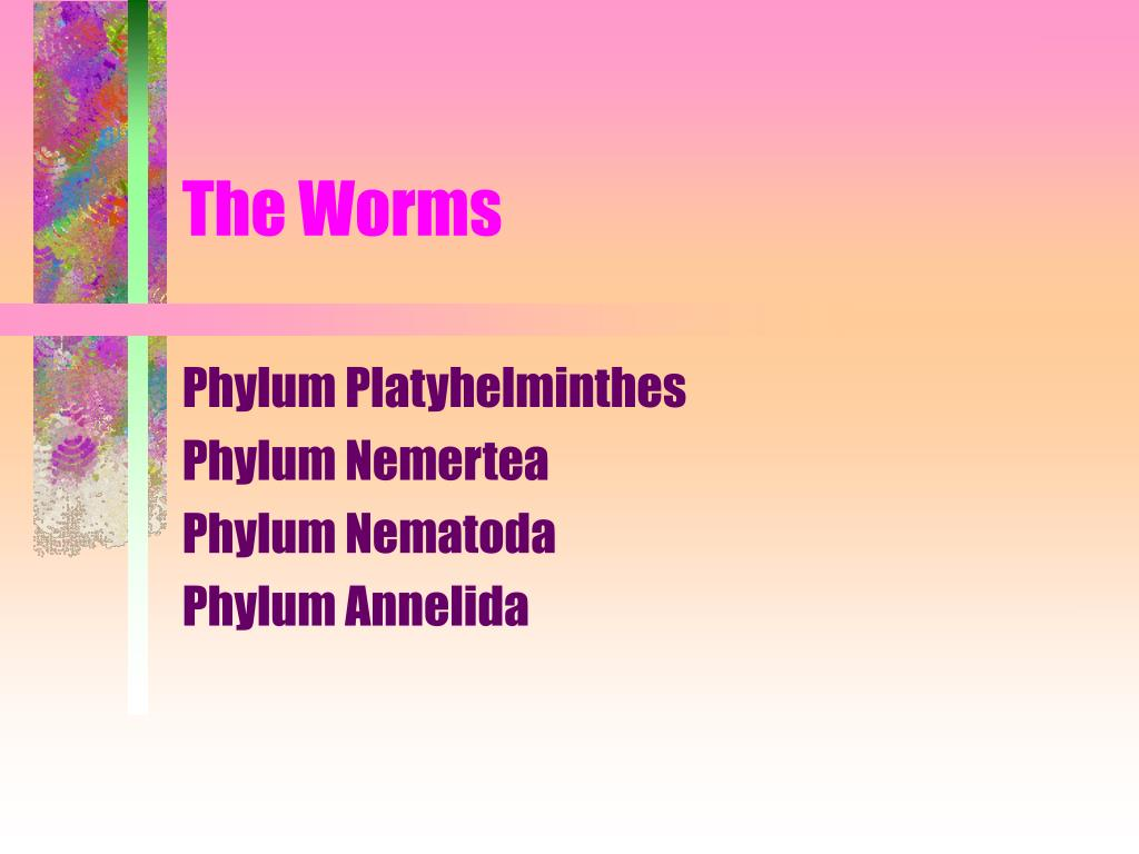 the worms l.