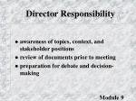 director responsibility