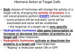 hormone action at target cells