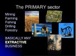 the primary sector