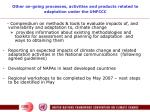 other on going processes activities and products related to adaptation under the unfccc