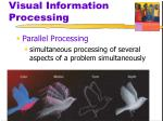visual information processing22