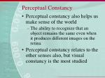 perceptual constancy41