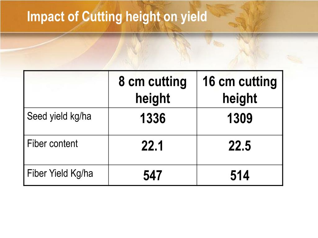 Impact of Cutting height on yield
