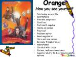 orange how you see yourself