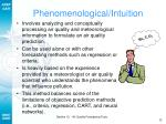 phenomenological intuition