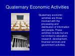quaternary economic activities