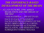 the experience based development of the brain