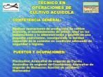 tecnico en operaciones de cultivo acuicola