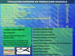titulacion superior en produccion acuicola