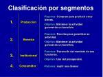 clasificaci n por segmentos