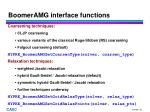 boomeramg interface functions