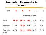 example segments to report