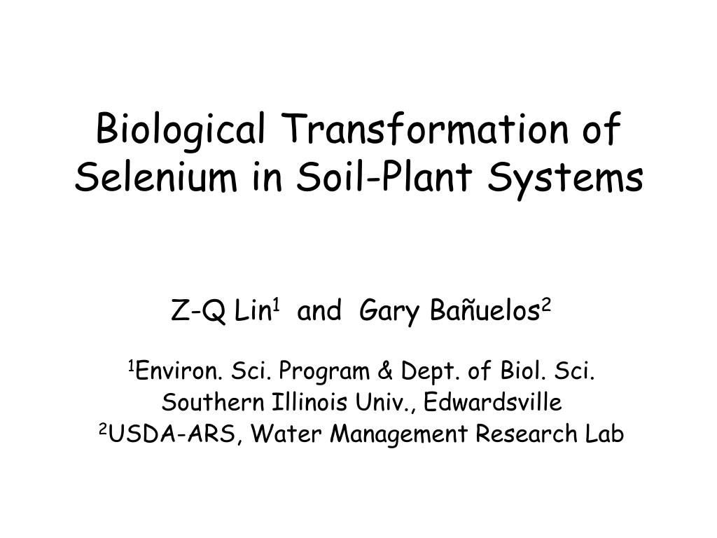 biological transformation of selenium in soil plant systems l.