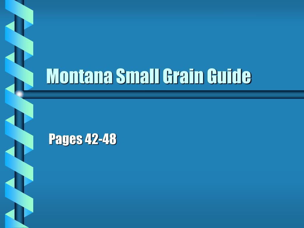 montana small grain guide l.
