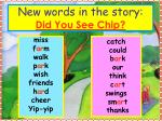new words in the story did you see chip