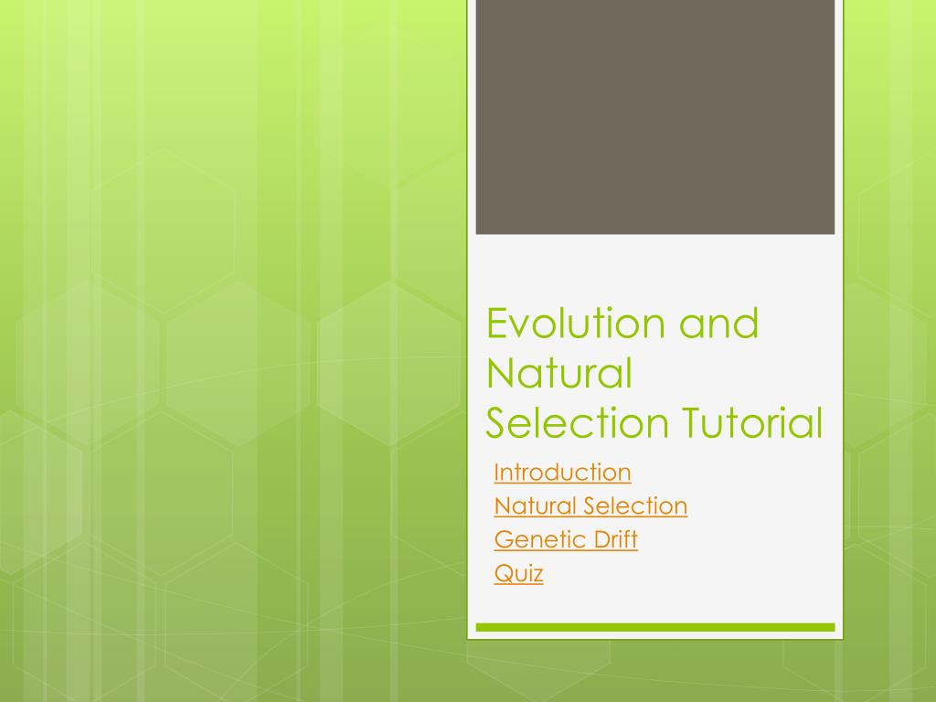 evolution and natural selection tutorial l.