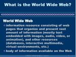 what is the world wide web5