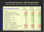 cost benefit analysis old peanut basin net present values npv 25 years ha 1 20 discount rate