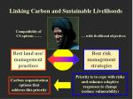 linking carbon and sustainable livelihoods