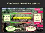 socio economic drivers and incentives