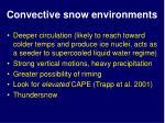 convective snow environments