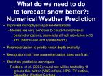 what do we need to do to forecast snow better numerical weather prediction
