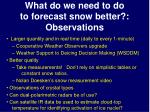 what do we need to do to forecast snow better observations