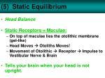 5 static equilibrium