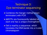 technique 3 dye terminator sequencing