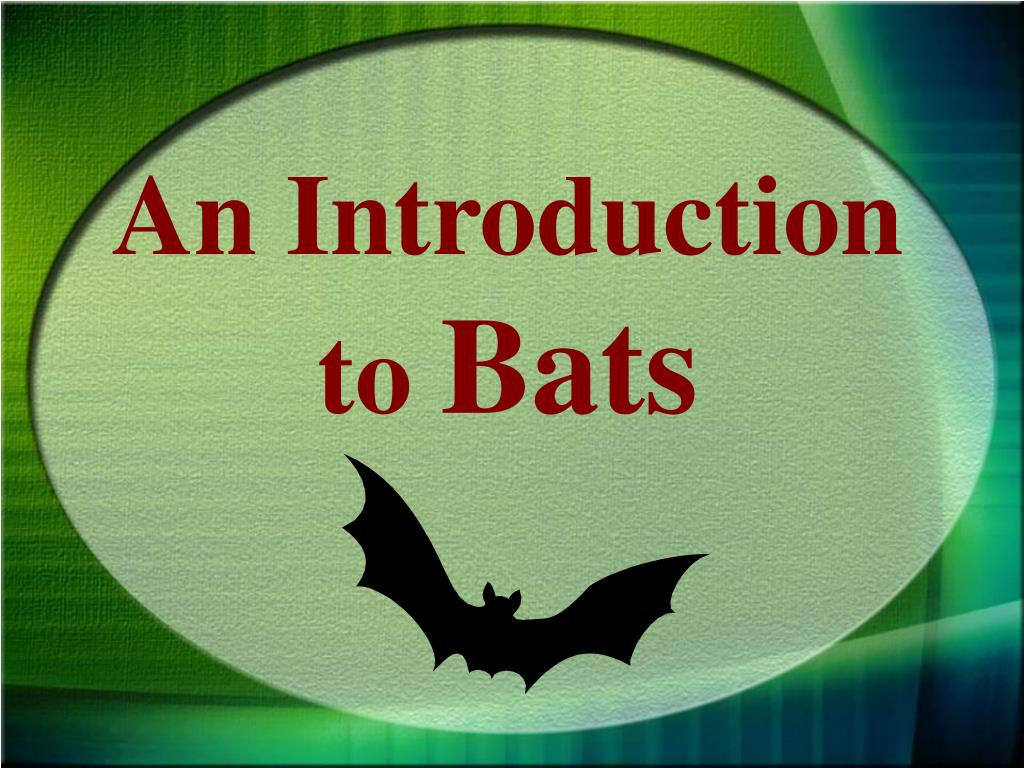 an introduction to bats l.