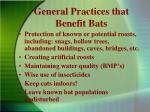 general practices that benefit bats