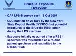 brucella exposure overview